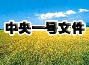 """""""一号文件""""聚焦农村土地制度改"""