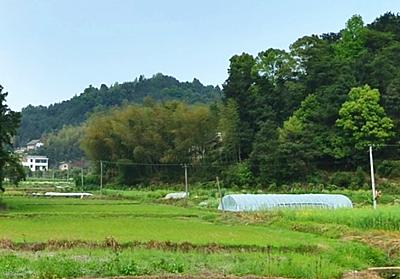 农业领域税收优惠政策汇编--土流网