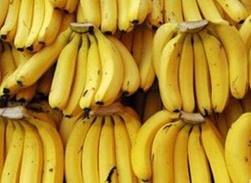 香蕉多少钱一斤?2017年下半年香蕉价格预测分析