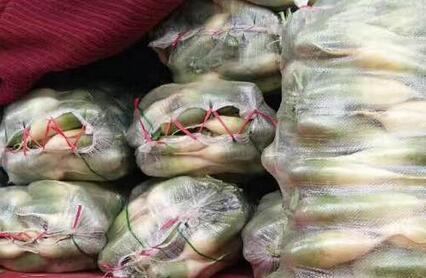 2017—2018年农村种植什么蔬菜、花卉、药材、果树品种可以赚钱?