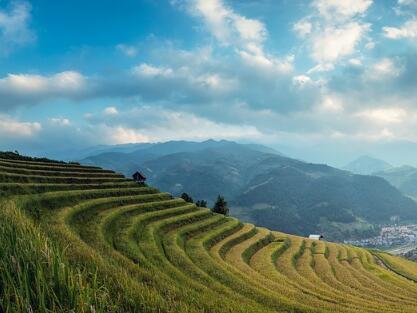 去农村创业,需要关注哪些政策?2017农村创业有哪些扶持政策