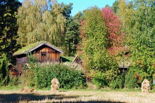 乡村旅游度假区土地流转