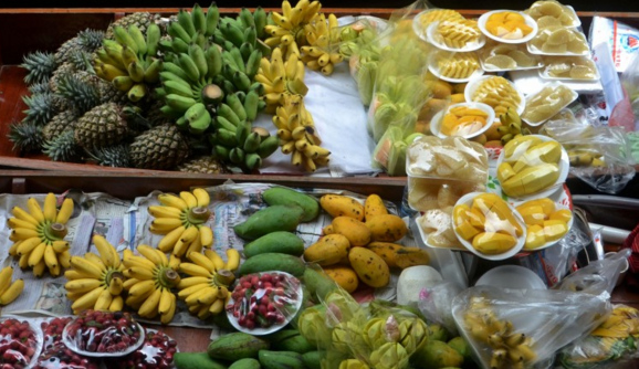 徐闻县关于进一步加快热带水果产业发展的实施意见