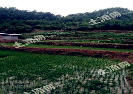 耕地质量等级国家最新标准