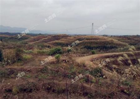 """中国的耕地红线是多少亩?保护耕地须严守这五条""""红线"""""""