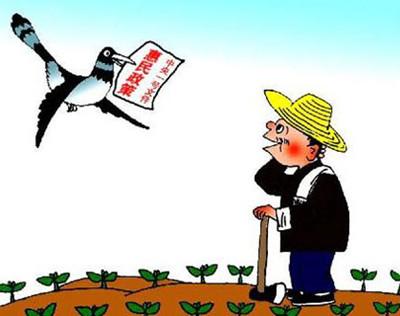 国家农业补贴项目