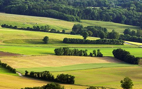 新西兰怀卡托乡村景观:土地和土壤
