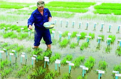 三农保险指什么_什么是三农政策_三农保险政策