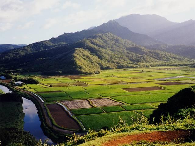 老挝土地资源、价格和政策简介