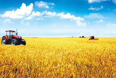 """我国现代农业将推动生态农业之""""环"""""""