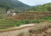 浙江省关于三农问题的政策解读