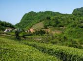 湖北省关于三农问题的政策解读