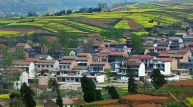 贵州安顺:农村集体产权制度改革的探索