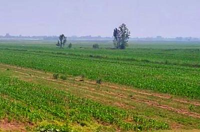 璧山区2016年一般农户耕地地力保护补贴标准每亩为多少?