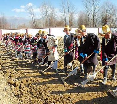 """""""西藏第一块农田"""":述说藏族古老的农耕文化"""