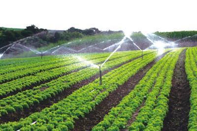农业用水量约占经济社会用水总量的