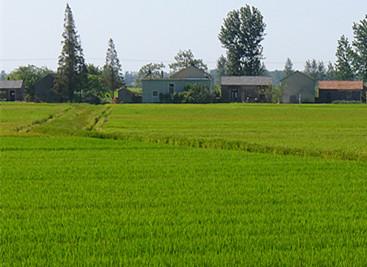 """江西新余市力争""""十三五""""期间打造全省绿色生态农业示范市"""