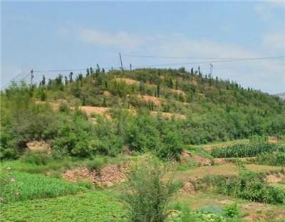 福建仙游县:大力推进土地承包经营权抵押贷款试点
