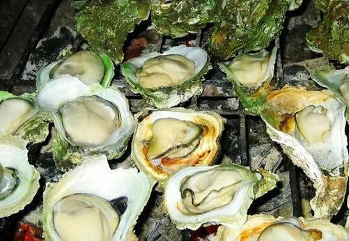 福建地区适合养殖牡蛎、海带、带鱼、鲐鱼、螃蟹吗?