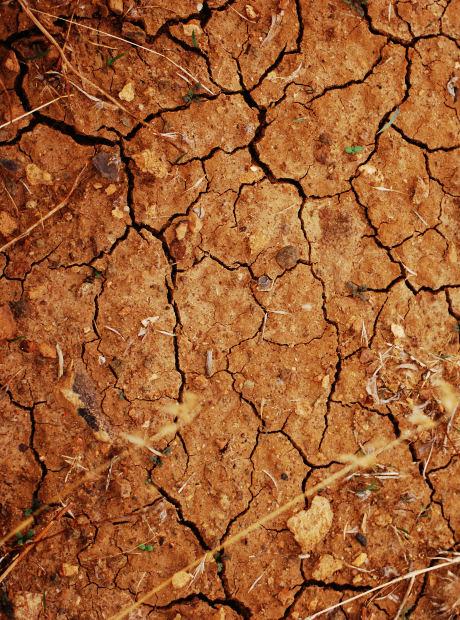 发达国家如何筹集土壤污染修复资金?(美、英、德)