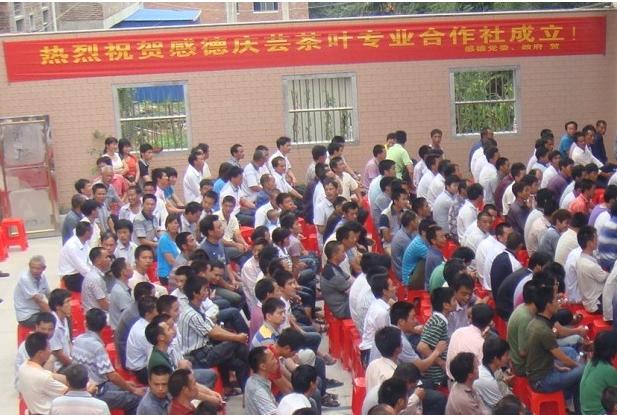 2016年福建省国家农民合作社示范社名单