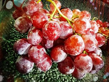 """""""人间天堂""""杭州哪里可以摘葡萄?"""