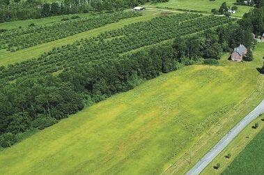 山东滨州市的高效生态农业建设案例