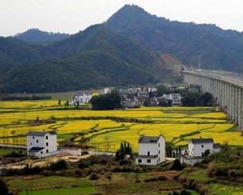 宣城:泾川镇农村土地确权全面进入发证阶段