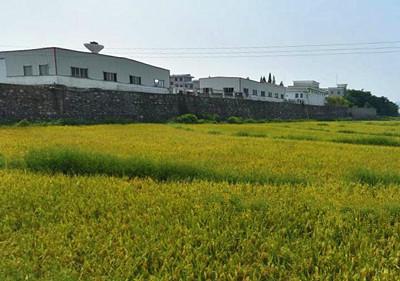 2016年淮安区应发放农业支持保护补贴资金多少万元?