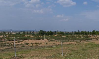 宁夏扶贫:受益于土地流转,贫困农民翻身了