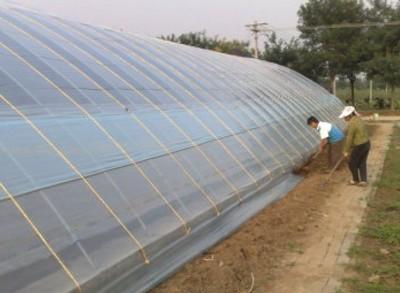 吉林省:扶余棚膜经济的发展脉络——位移与嬗变