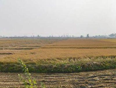 优化农村金融生态的实践与思考(抚顺市)