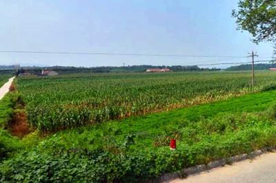 突泉县2016年农业支持保护补贴已发放完毕,每亩补贴多少?