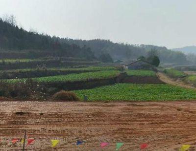 农地流转纠纷的主要特点及解决建议(湖南永州市)