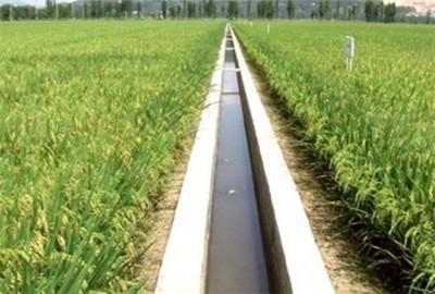 青海省将管好用好农田水利设施