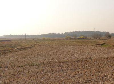 湖北省高标准农田建设推进方案、管理意见出炉