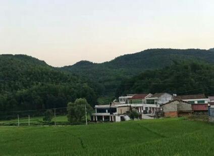 湖北省加强农村经营管理 强化农业体制支撑