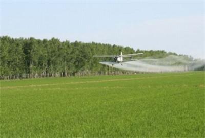 云南省规范现代农业项目管理