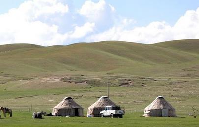 """内蒙古玉米""""粮改饲""""  旱灾也能实现农业牧业双赢"""