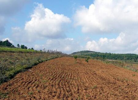 云南省家庭承包耕地流转最新消息及相关政策
