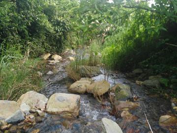 张家口大力发展生态农业