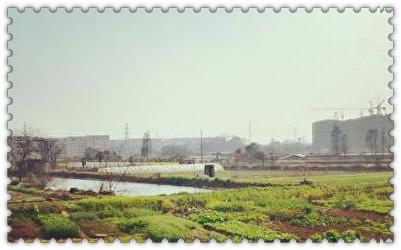 河北省沧州市:推行食用农产品质量可追溯制度