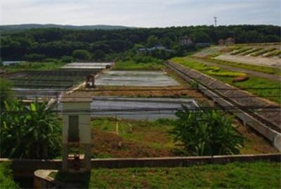 重庆秀山:创新机制推进农田水利建设取得显著成效