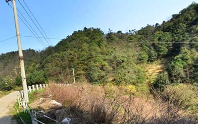 2016年河南省三门峡市崖底村土地流转方案公告