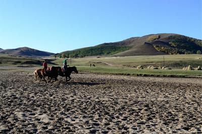 2016前三季度内蒙古赤峰市农牧民土地流转收入增长25%