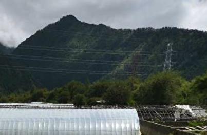 西藏林芝发放29万元首笔农村土地承包经营权抵押贷款