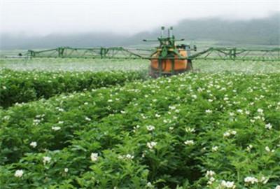 甘肃省明确农业现代化战略重点与区域布局