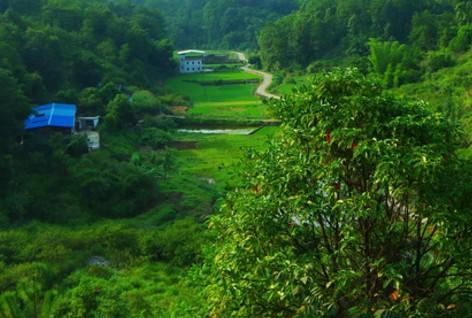 沈阳于洪区把乡村旅游业和现代农业发展进行了提速