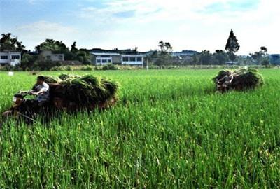 河南省利用新型农民培训基地发展现代农业