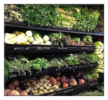 南方适合种植的蔬菜有哪些?种植时间是什么时候?